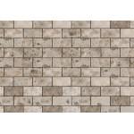 Mozaika Artion 5x10 cm, m2