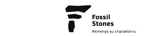 Akmens apdaila, skalūnas, kvarcitas - Fossil Stones